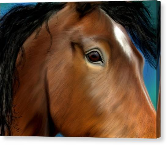 Horse Portrait Close Up Canvas Print