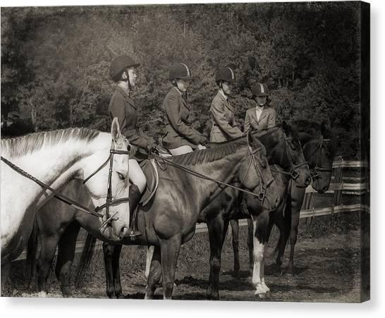 Horse Sense Canvas Print by JAMART Photography