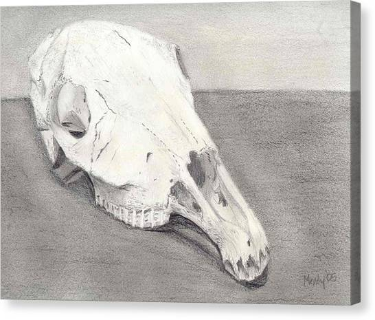 Horse Skull Canvas Print by Mendy Pedersen