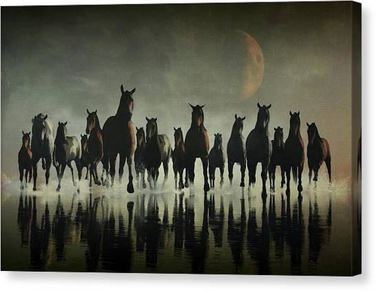 Horse Stampede In The Sea Canvas Print