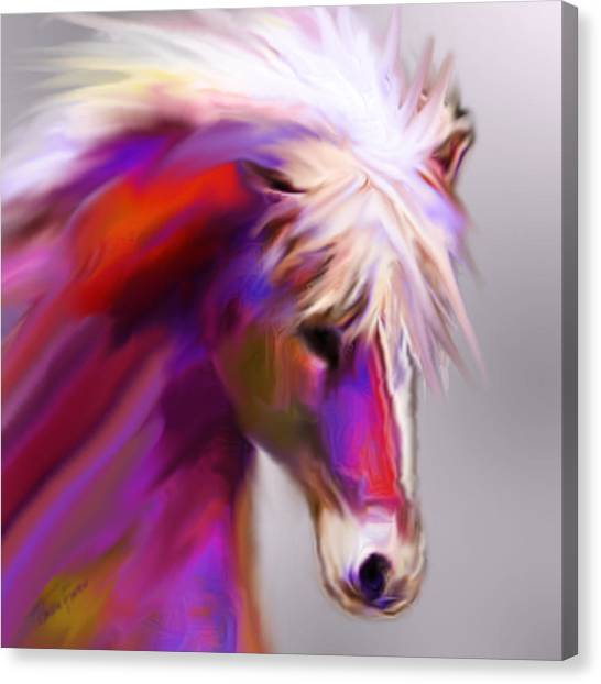 Horse True Colors Canvas Print