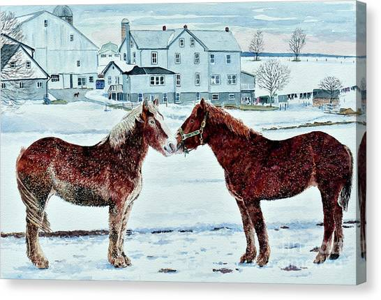 Horse Farms Canvas Print - Horses, Amish Farm, Lancaster, Pa by Anthony Butera