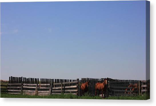 Horses - Corrals - And Alberta Prairie Sky Canvas Print