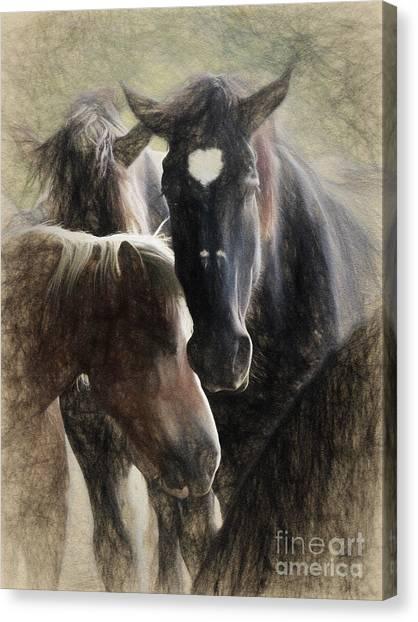 Canvas Print - Horses by Elijah Knight