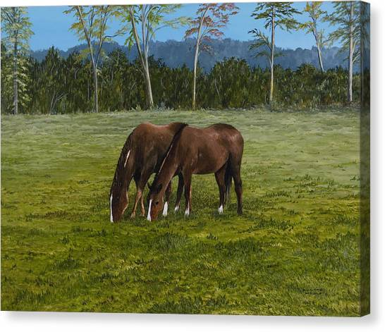 Horses Of Romance Canvas Print