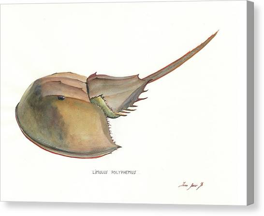 Ocean Animals Canvas Print - Horseshoe Crab by Juan Bosco