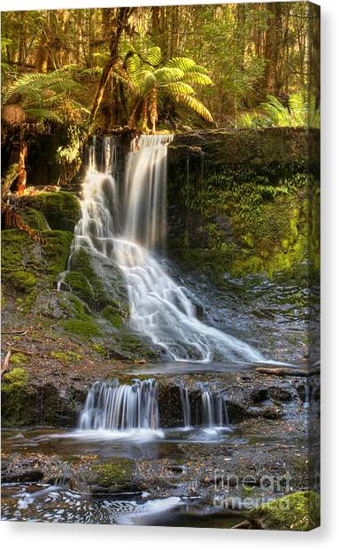 Horseshoe Falls Canvas Print - Horseshoe Falls Tasmania by Bill  Robinson