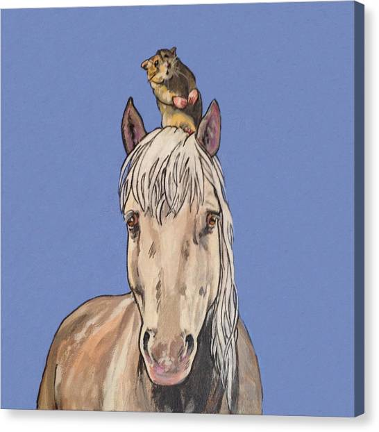Hortense The Horse Canvas Print
