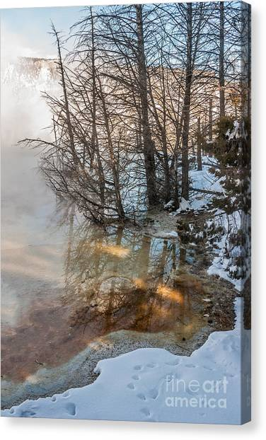 Hot And Cold In Yellowstone Canvas Print