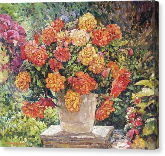 Hot Begonia Canvas Print by Andrey Soldatenko