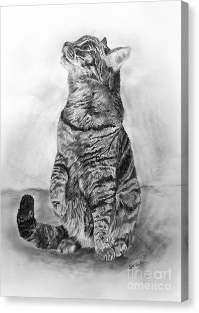 House Cat Canvas Print