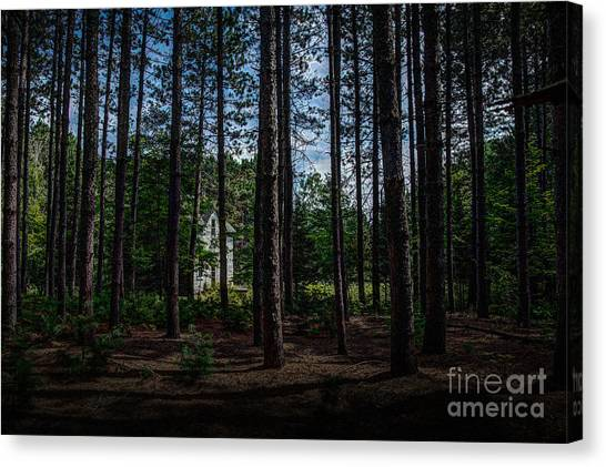 House In The Pines Canvas Print