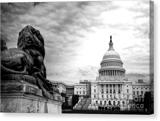 House Of Lions Canvas Print