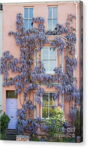 Floribunda Canvas Print - House Of Wisteria by Tim Gainey