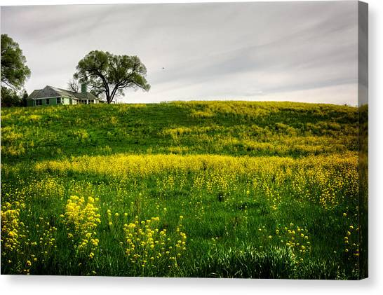 Wild Orchards Canvas Print - House On The Hill by Greg Mimbs