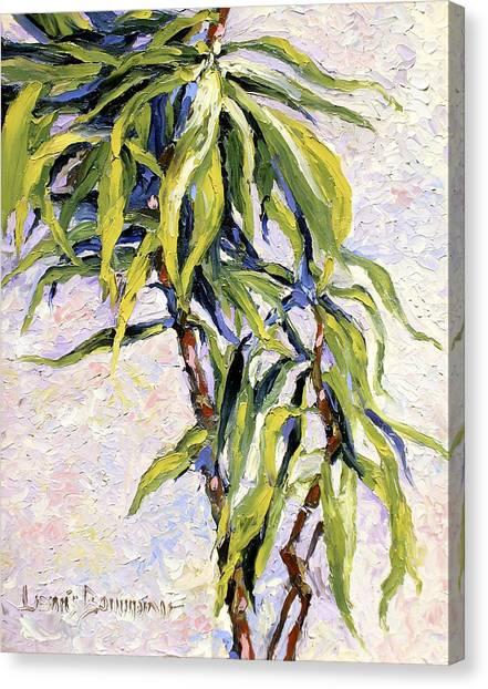 House Plant Canvas Print