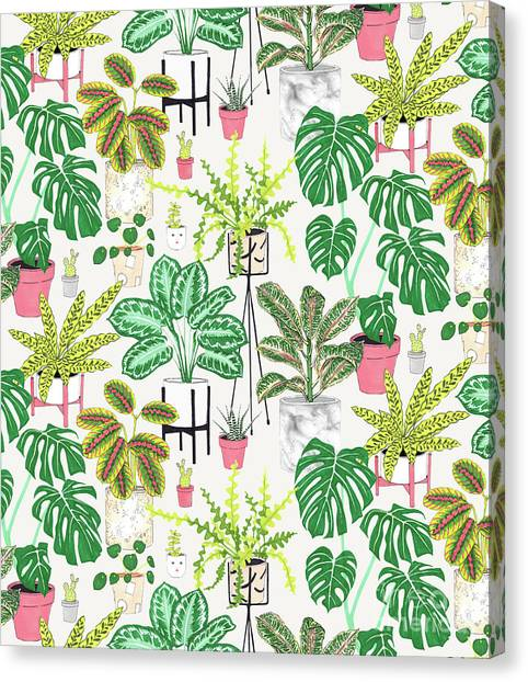 Repeat Canvas Print - House Plants by Jacqueline Colley