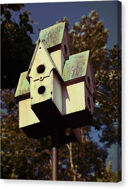 House Sparrow Canvas Print by JAMART Photography