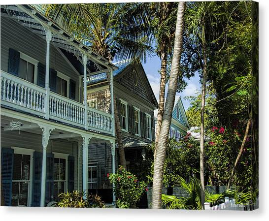 Houses In The Palms  Canvas Print by Dale Wilson