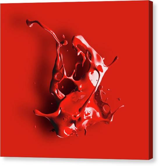 Pre-modern Art Canvas Print - Hovering Paint by Tony Rubino