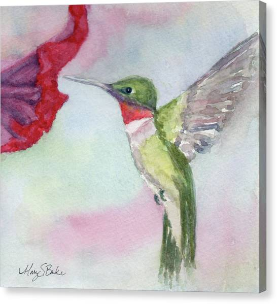 Hovering Ruby Canvas Print