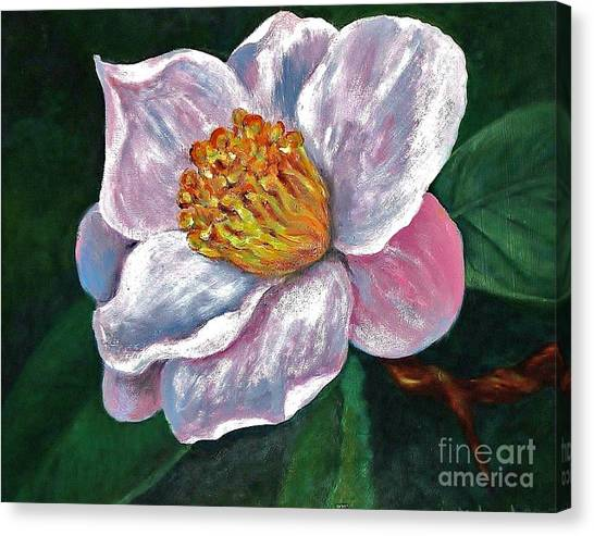 Hoyt Flower Oil 2 Canvas Print by Emily Michaud