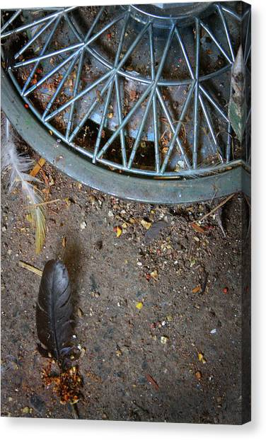 Hubcap And Feather Canvas Print by Amanda Wimsatt
