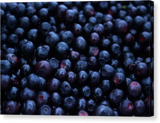 Wild Berries Canvas Print - Huckleberries by Chestnut Mocha