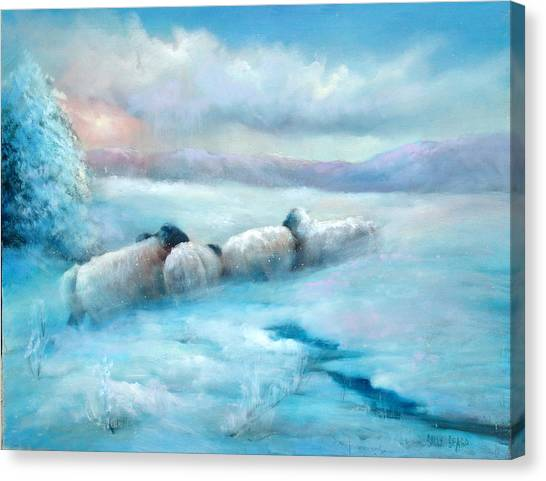 Huddling Sheep Canvas Print by Sally Seago