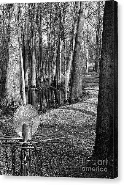 Disc Golf Canvas Print - Hudson Mills Disc Golf by Phil Perkins