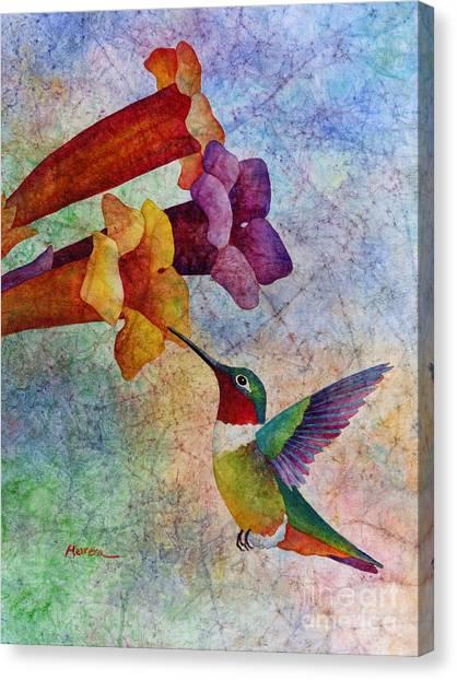 Hummingbirds Canvas Print - Hummer Time by Hailey E Herrera