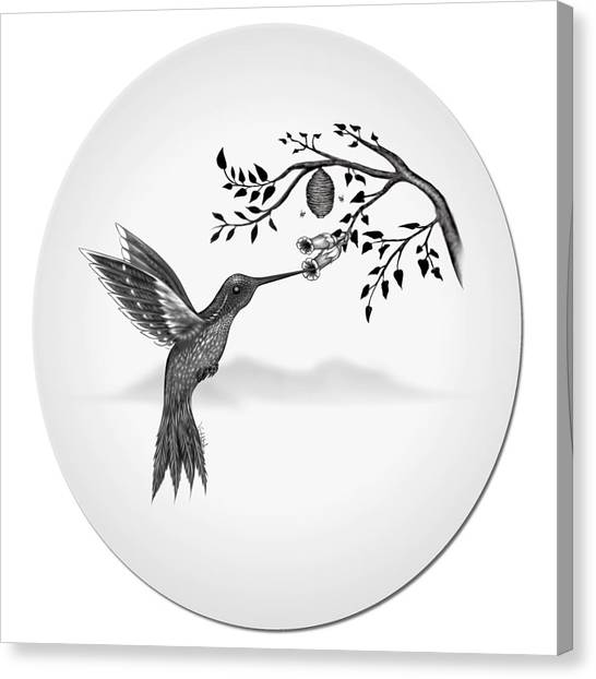 Humming Bird On Oval Canvas Print