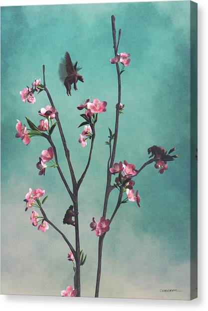 Black Bears Canvas Print - Hummingbears by Cynthia Decker