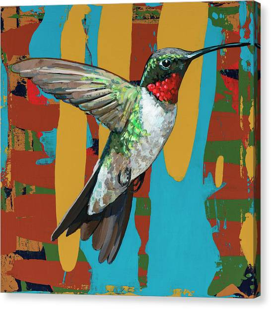 Colorful Bird Canvas Print - Hummingbird #10 by David Palmer