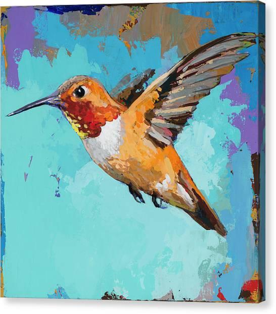 Hummingbirds Canvas Print - Hummingbird #11 by David Palmer