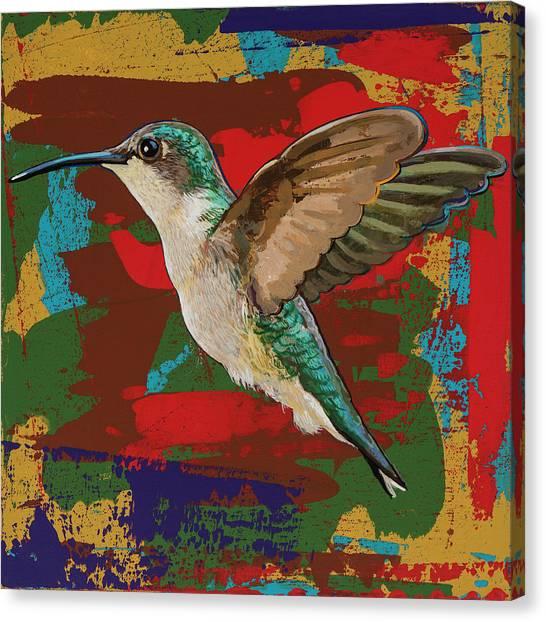 Colorful Bird Canvas Print - Hummingbird #12 by David Palmer