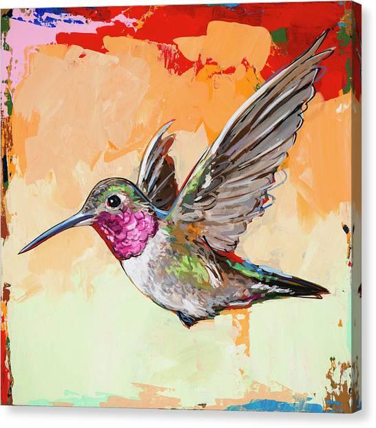 Hummingbirds Canvas Print - Hummingbird #13 by David Palmer