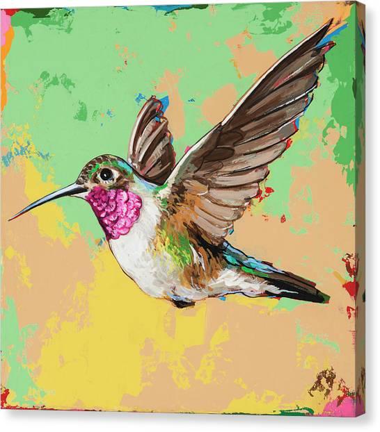 Hummingbirds Canvas Print - Hummingbird #21 by David Palmer