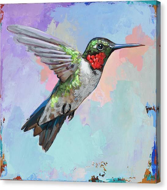 Small Birds Canvas Print - Hummingbird #4 by David Palmer