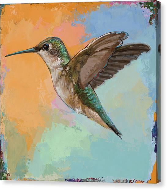 Small Birds Canvas Print - Hummingbird #5 by David Palmer