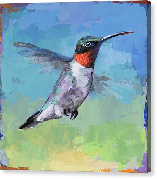 Hummingbirds Canvas Print - Hummingbird #8 by David Palmer