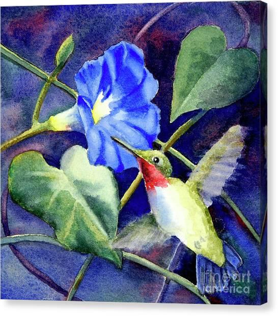 Hummingbird Delight Canvas Print