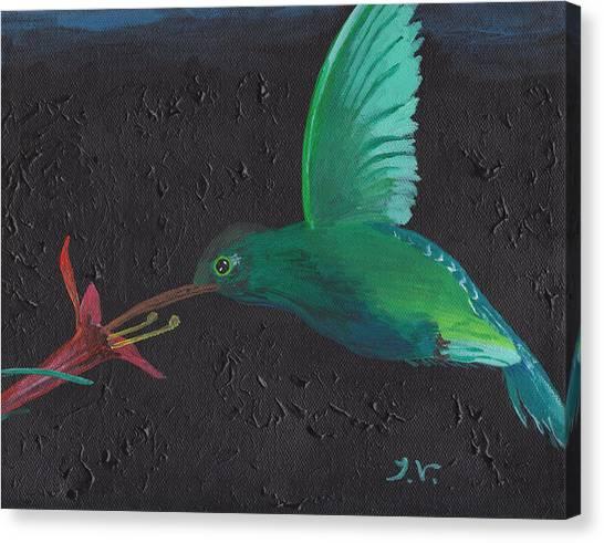 Hummingbird Feeding Canvas Print