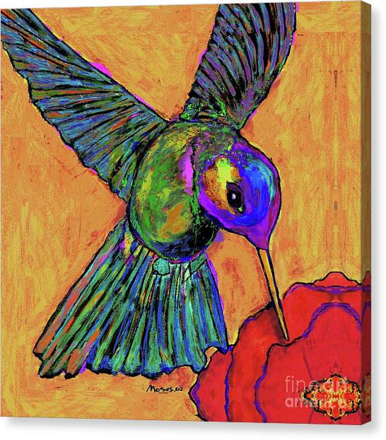 Hummingbird On Yellow Canvas Print