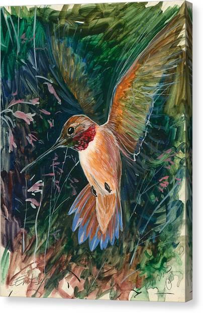 Hummingbird Canvas Print by Shari Erickson