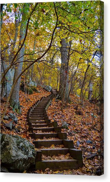 Humpback Rock Trail Canvas Print
