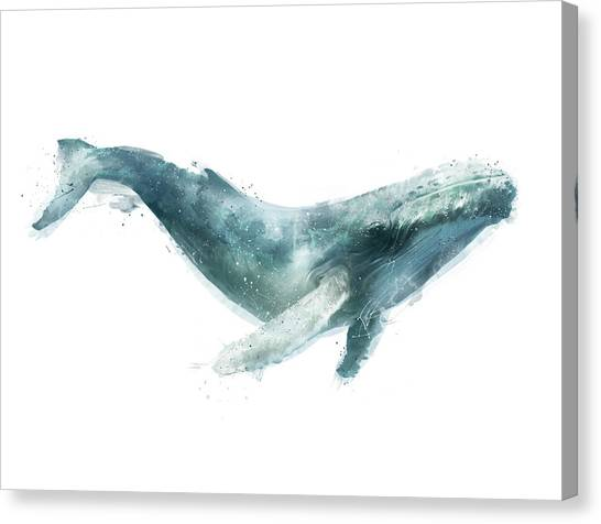 Whales Canvas Print - Humpback Whale From Whales Chart by Amy Hamilton
