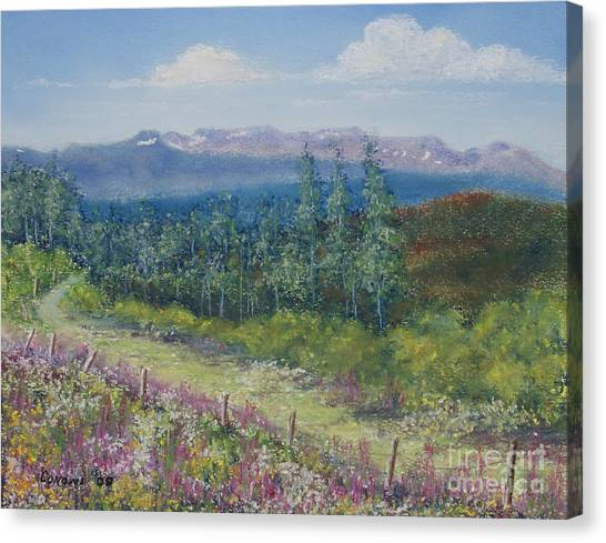 Summer Flowers On Hungry Hill Canvas Print