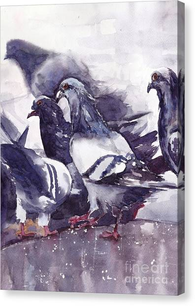 Small Birds Canvas Print - Hungry Pigeons Watercolor by Suzann's Art