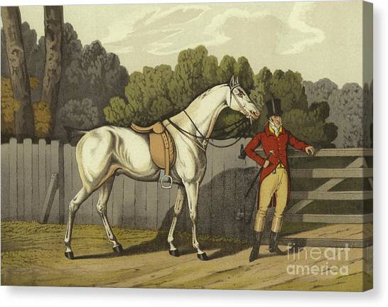 White Horse Canvas Print - Hunter by Henry Thomas Alken